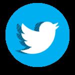 twitter-cropped-iltrecastagnese-logo-piccolo-trecastagni-blog-info-giornale-notizie